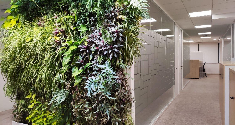 jardín vertical frondoso en oficinas de Madrid