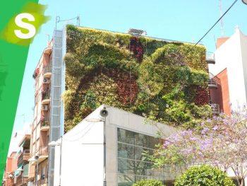 jardin_vertical_sanVicente_Alicante
