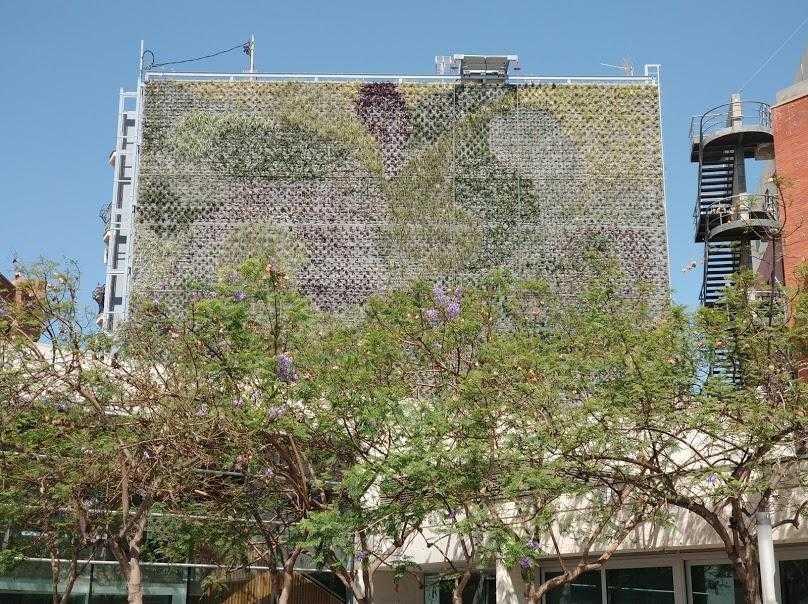 Rehabilitación de jardines verticales