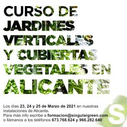 curso online jardines verticales y cubiertas vegetales en Alicante