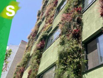 jardin_vertical_madrid_leafskin