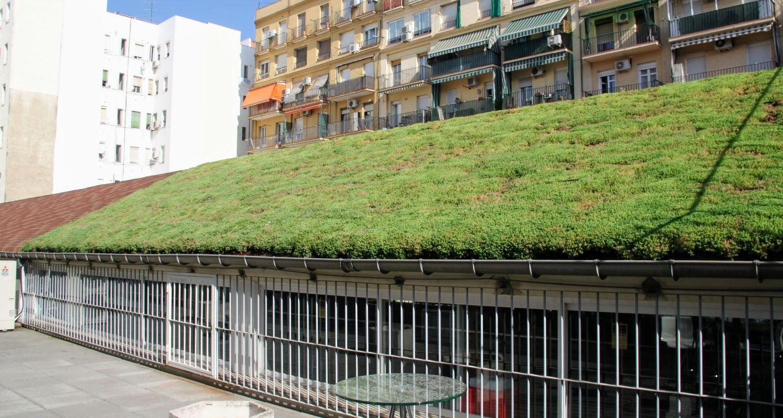 Cubierta vegetal en Madrid