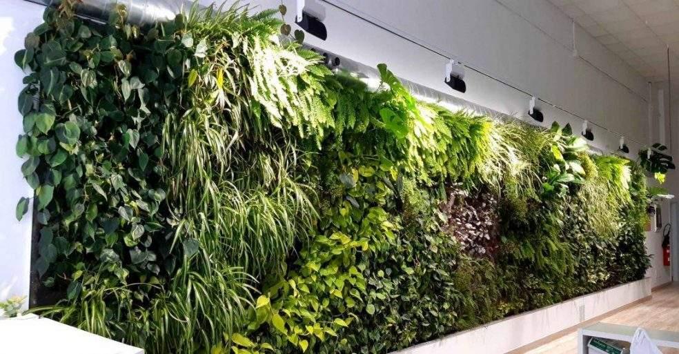 Jardines verticales de interior para aire acondicionado de oficinas
