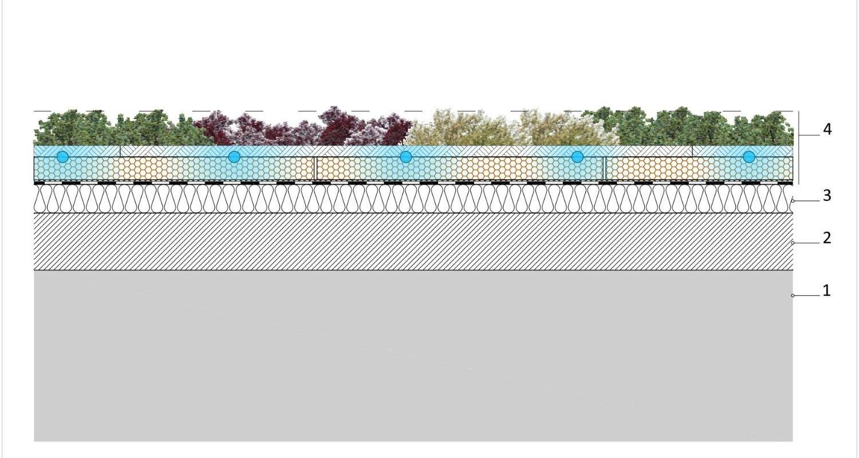 Detalle consctructivo de cubierta vegetal