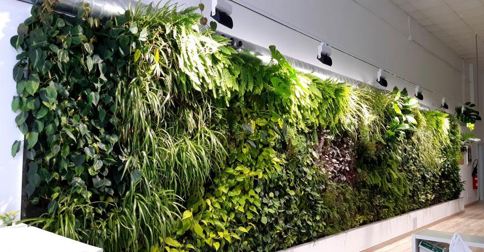 Aire acondicionado vegetal SingularAir