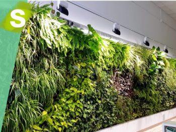 jardín vertical de aire acondicionado vegetal