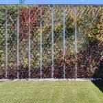 Jardin vertical y cubierta vegetal
