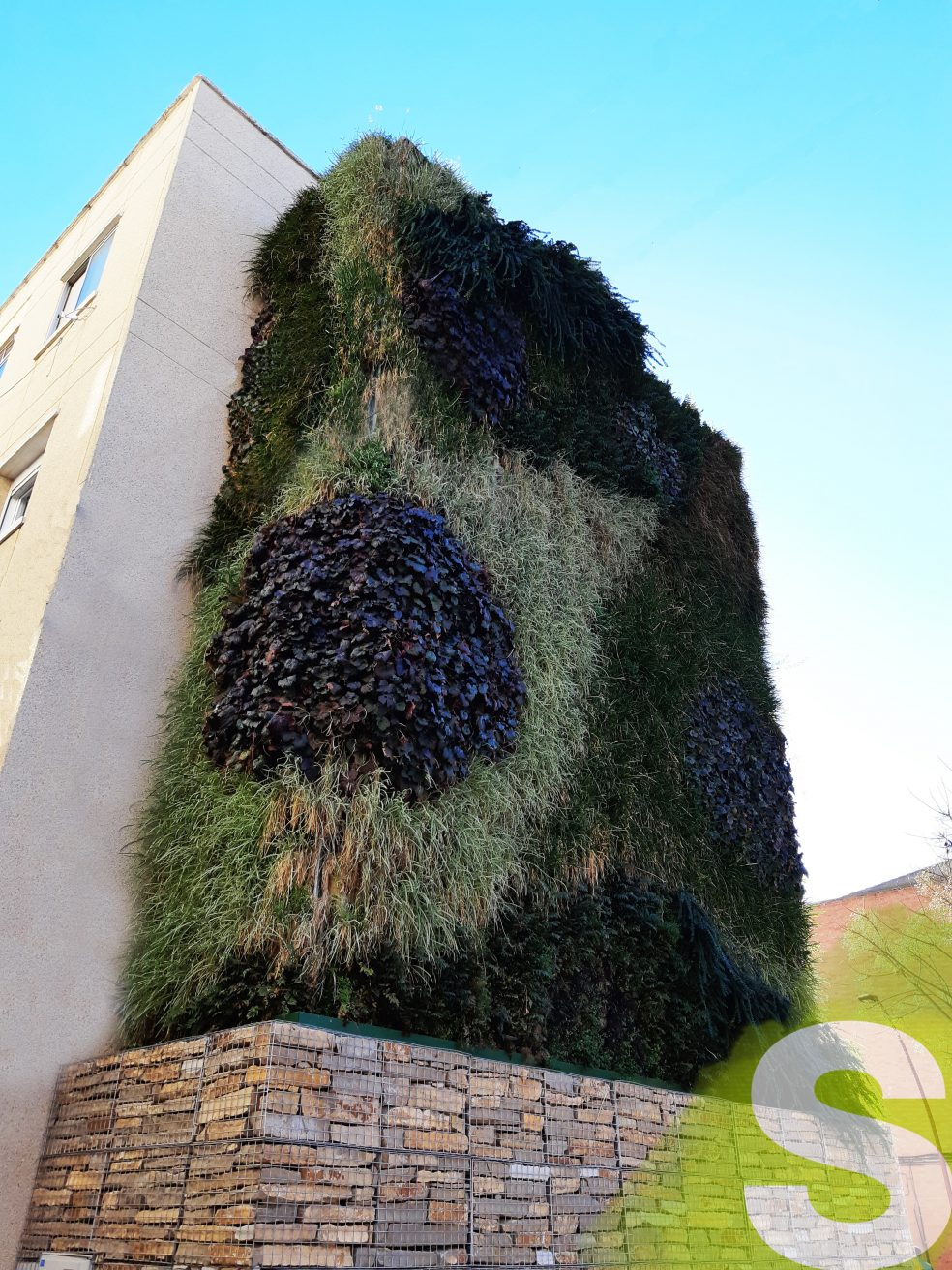 Jardín vertical Azuqueca de Henares, Guadalaja