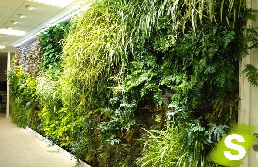 Jardín vertical interior en unas oficinas en Madrid