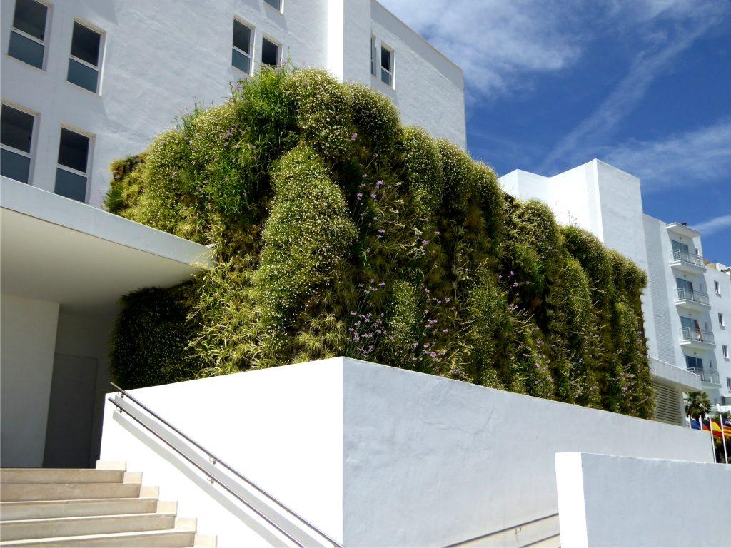 Jardín vertical en el exterior en un hotel en Mallorca