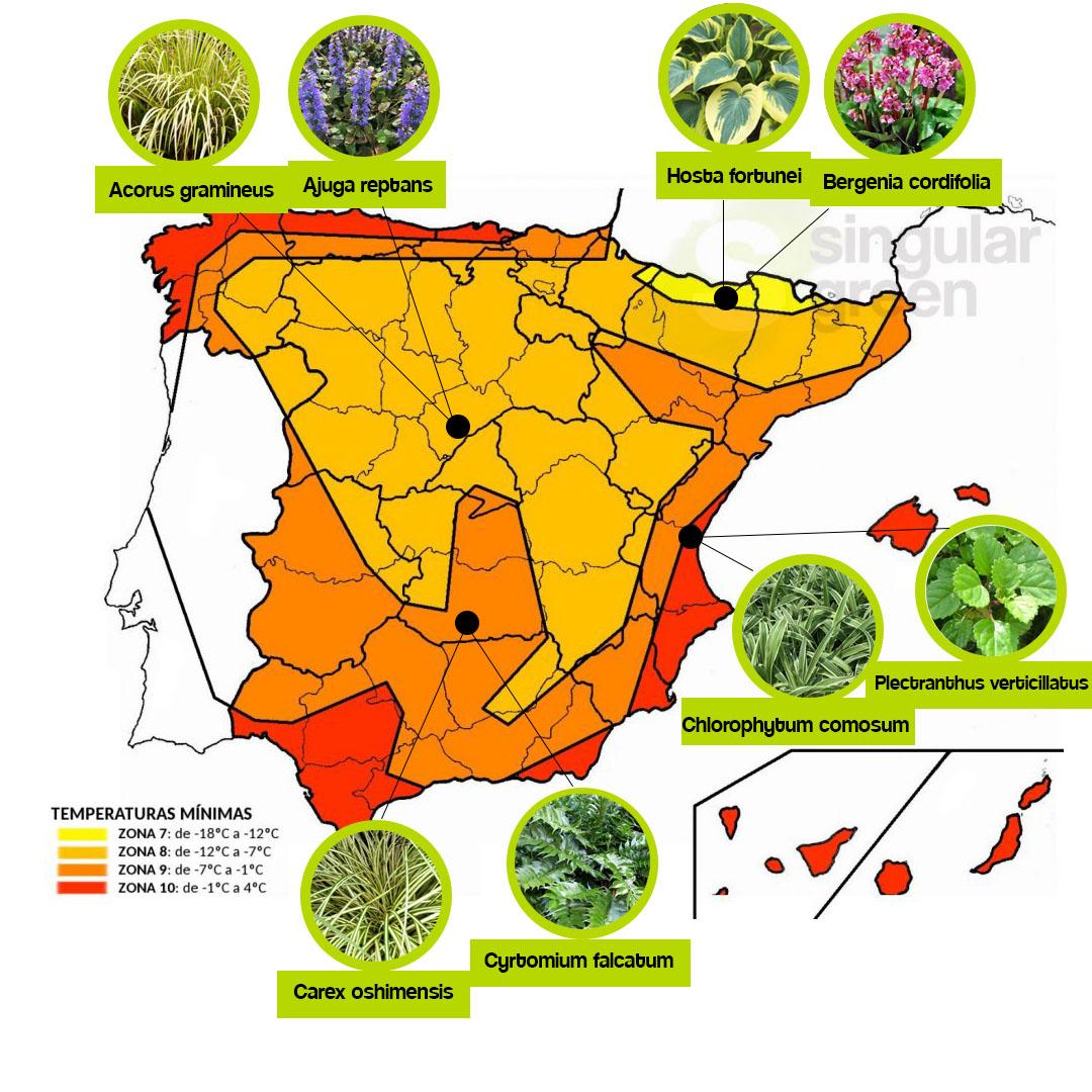 Mapa de las zonas climáticas y las plantas que se recomienda para cada una de ellas