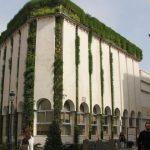Ayuntamiento de Lucena SingularGreen