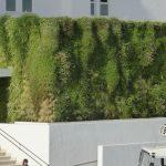 Jardín vertical al sol