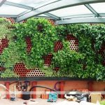 diseño de muro verde en restaurante