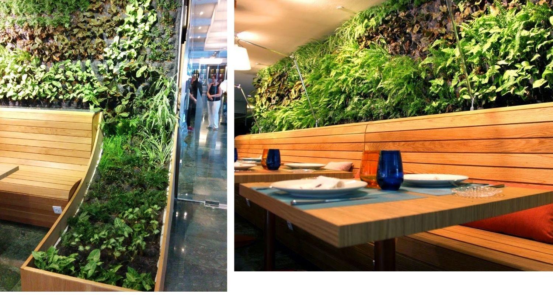 Detalles de diseño para un jardín vertical en un restaurante