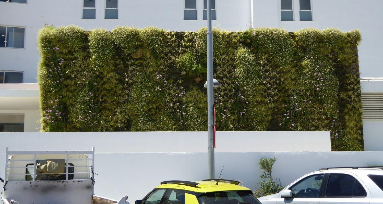 Muro verde en palma de Mallorca