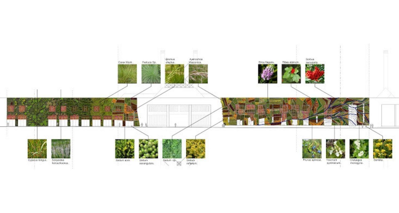 Palacio de Congresos proyecto plantación