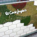 Valladolid muro verde
