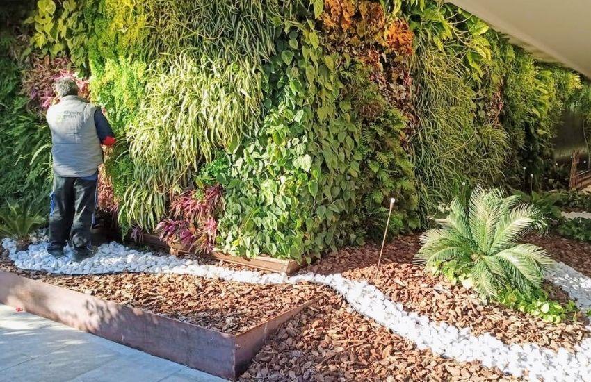 Mantenimiento del jardín vertical del hotel don pancho de Benidorm (alicante)