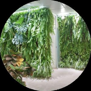 Jardin vertical Sistema F+P Singulargreen