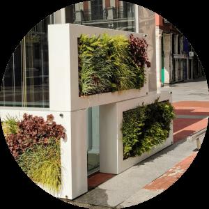 Jardines verticales Cuadros vegetal singulargreen