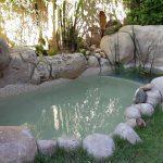 piscina natural estanque