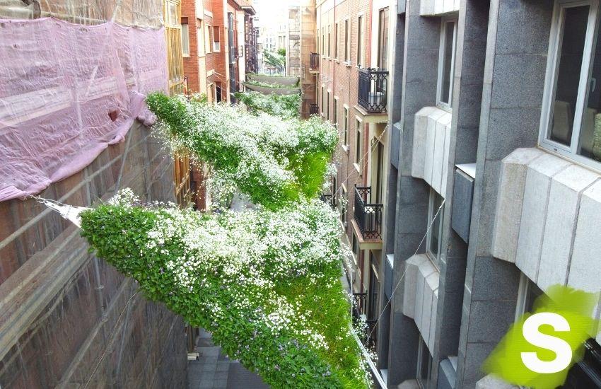 Toldos de vela vegetados instalados en la calle Santa María en Valladolid