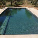 biopiscina natural en Valencia con plantas acuáticas