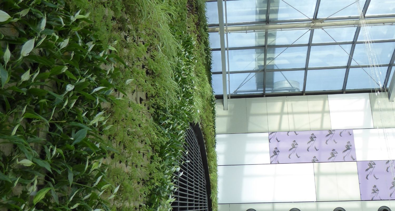 Detalle de plantas para un jardin vertical en centro comercial