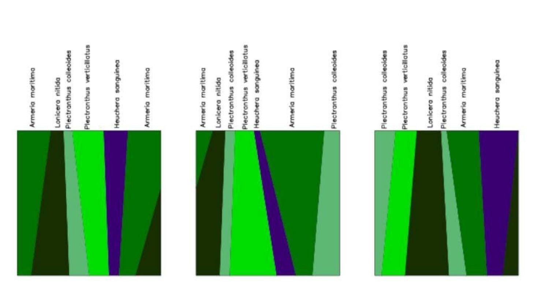 Diseño de 3 jardines verticales cuadrados