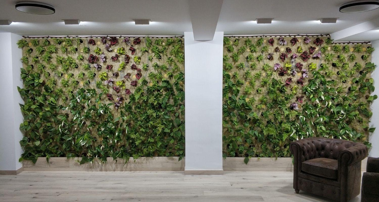 Jardines verticales en oficinas en Alicante