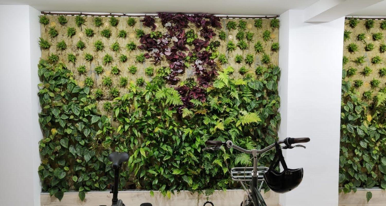 Jardin en oficinas de Alicante, recién plantado