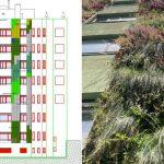 Diseño de un jardín vertical en fachada