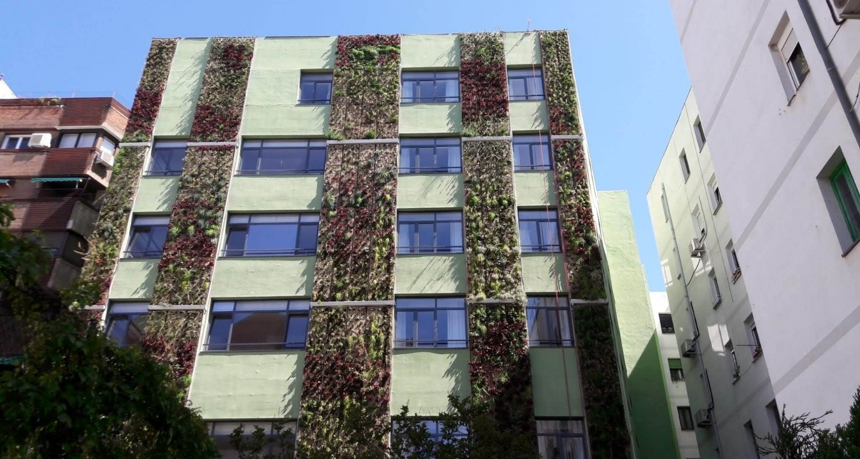 Detalle de jardinería vertical para diseño de fachadas