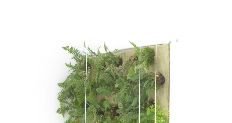 Detalle superior de jardín vertical hall de entrada