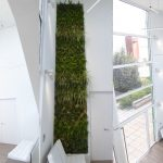 muro vegetal vertical