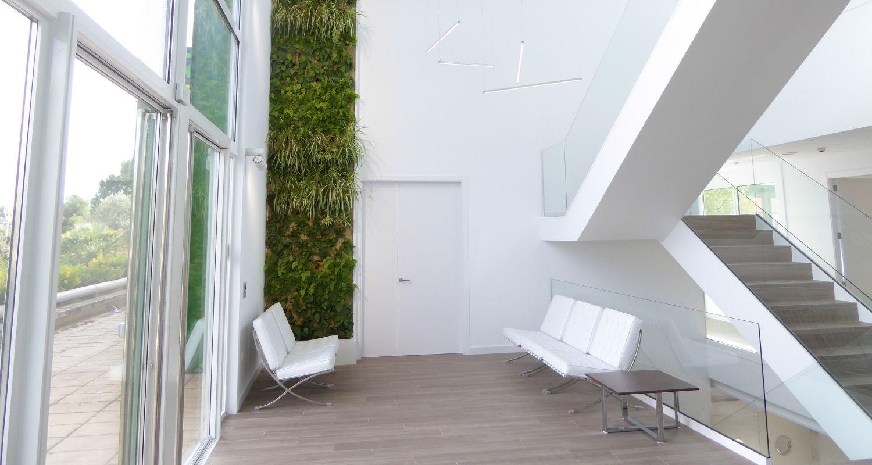 Acceso de jardín vertical en hall de oficinas en valencia