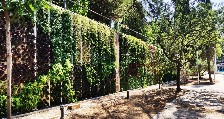 Jardín recién plantado en Madrid
