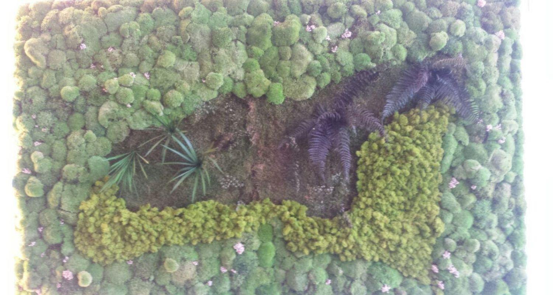 Jardín vertical de planta conservada en Alicante