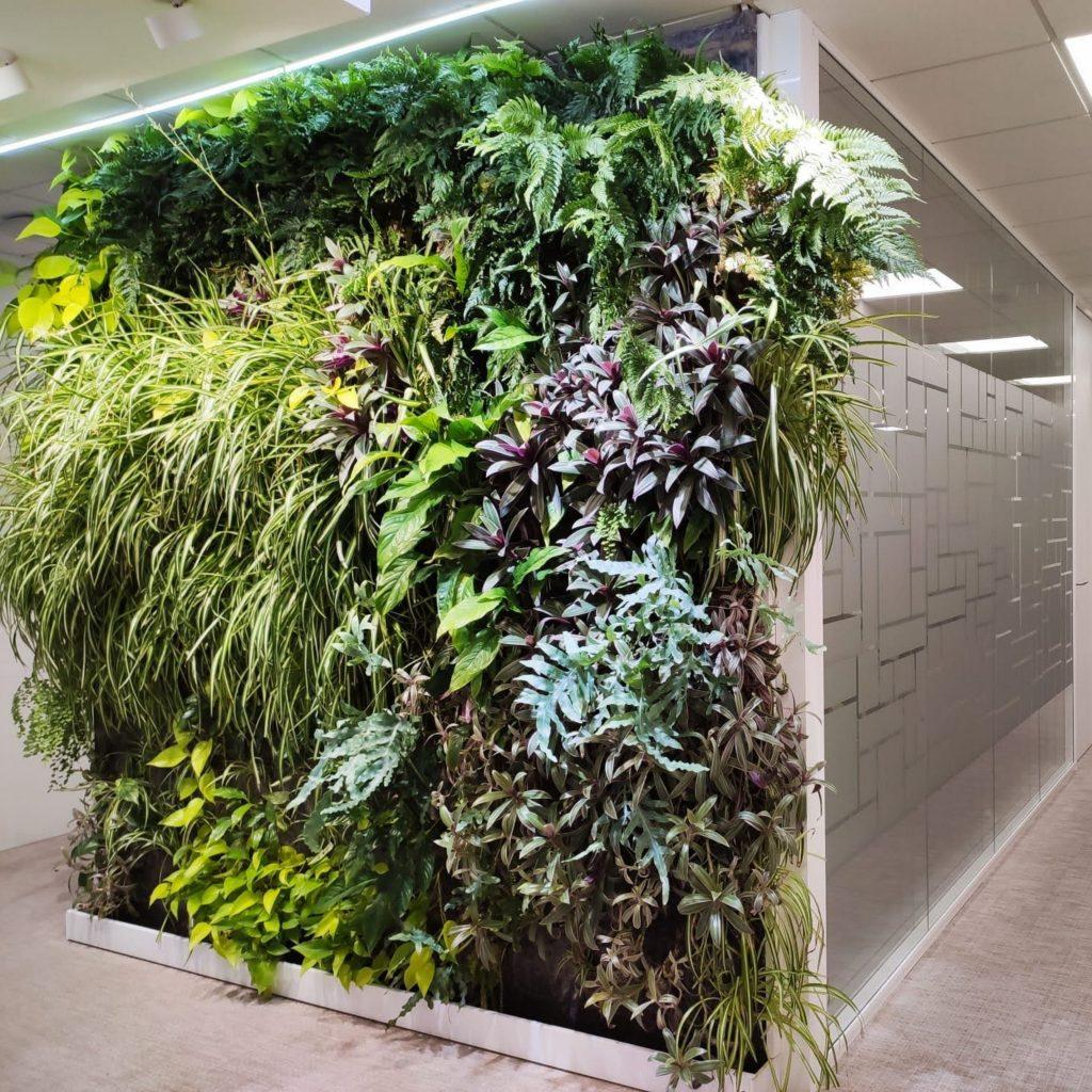 jardines verticales para oficinas de diseño