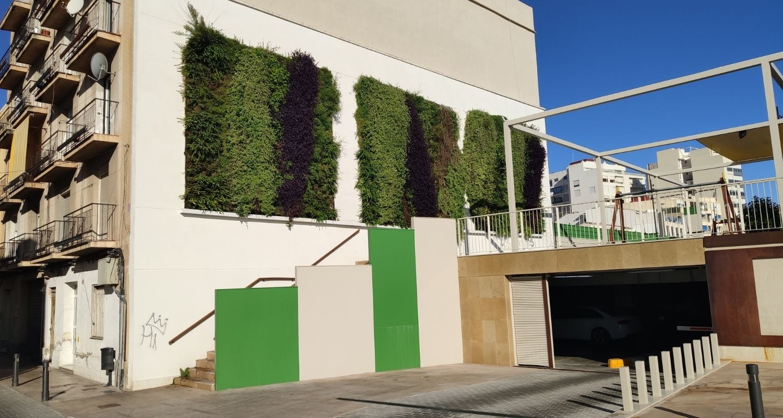 Jardines verticales en exterior. Valencia
