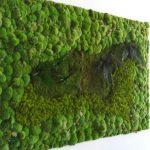 Muro verde de planta preservada