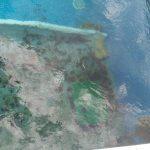 Reconversión de una piscina sin químicos