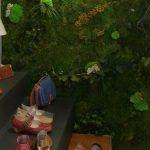 Planta conservada diseño tienda