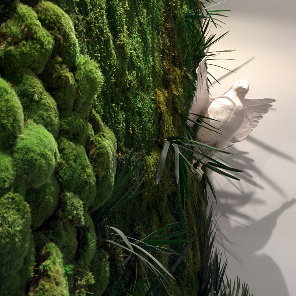 Muros de planta preservada en palma