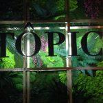Letras y plantas artificiales