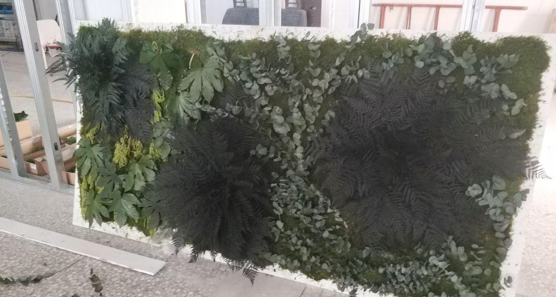 Detalle de plantas preservadas retail restaurante