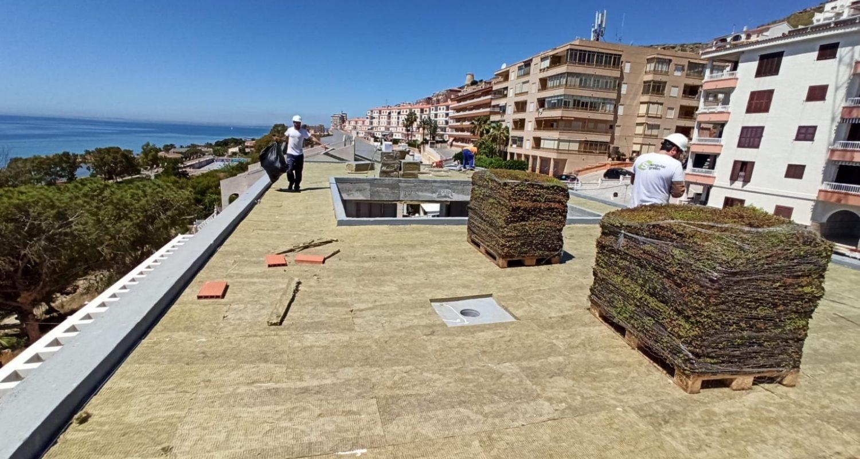 Montaje de la cubierta vegetal en Santa Pola