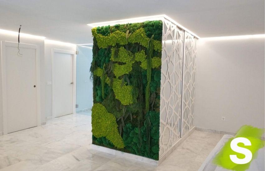 Jardín vertical planta conservada en Valencia