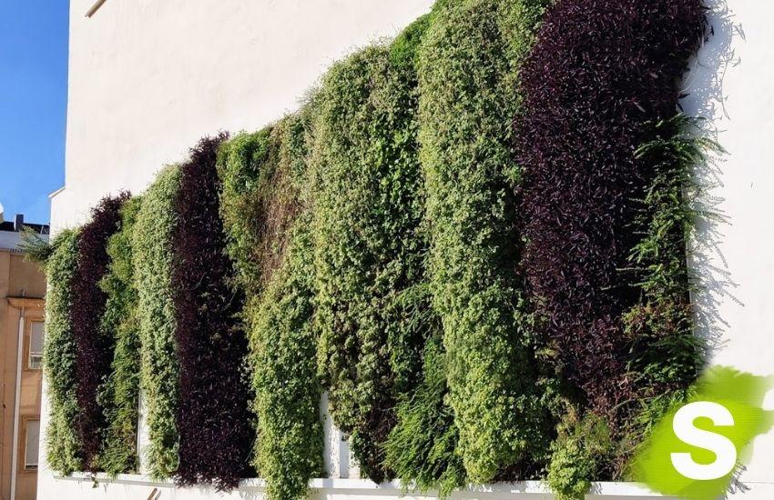 Jardines verticales instalados en Gandia